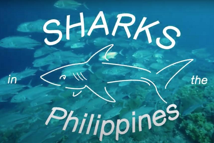 フィリピンにある(一部)のサメの特集